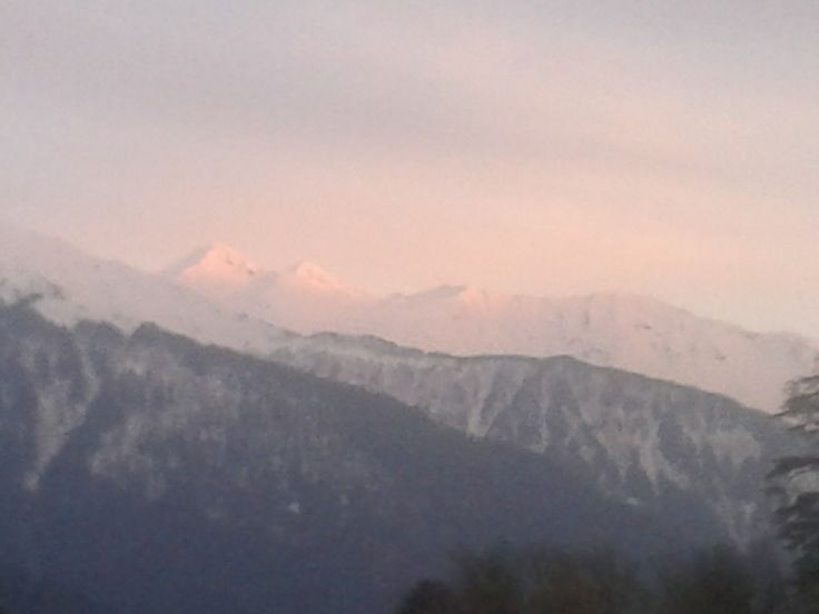 Himalayas from Bliss and Blossom Cottages, Manali