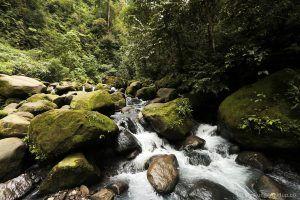 1000+ ide tentang Lingkungan Hidup di Pinterest   Pengetahuan ...