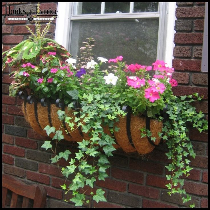 1000 ideas about hanging flower pots on pinterest for Hanging flower pots ideas