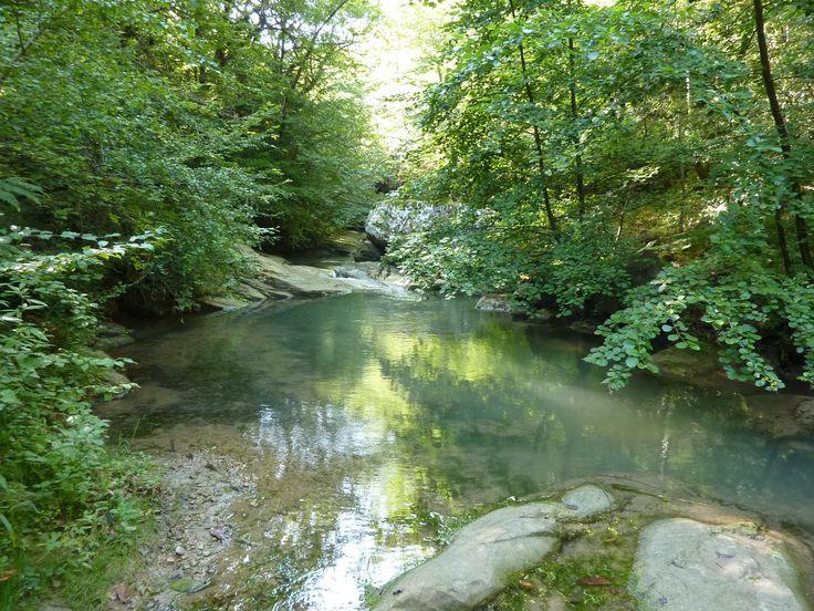 Gestion des Milieux Aquatiques et l'assistance du SMMAR | Communauté de Communes du Pays de Couiza