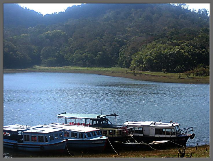 Lake Periyar and the Periyar Wildlife Reserve, Kerala