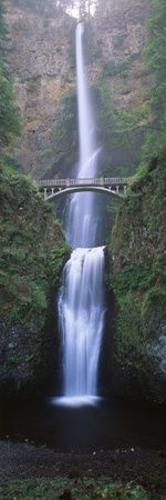 View of Multnomah Falls in Columbia Gorge, Oregon, USA  | Beautiful prints of the world's most stunning places!