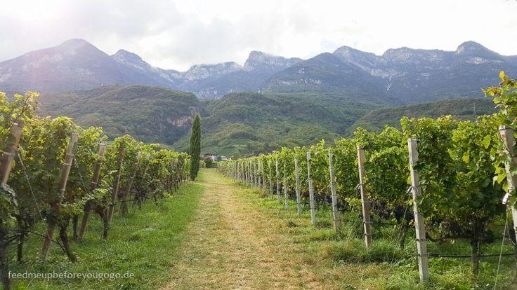 Kaltern, Südtirol, Italien // Feed me up before you go-go