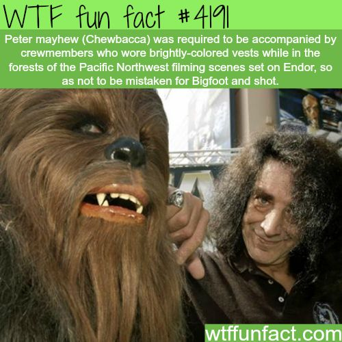 Chewbacca & Bigfoot - Well, ...I can SEE the Reasoning ...