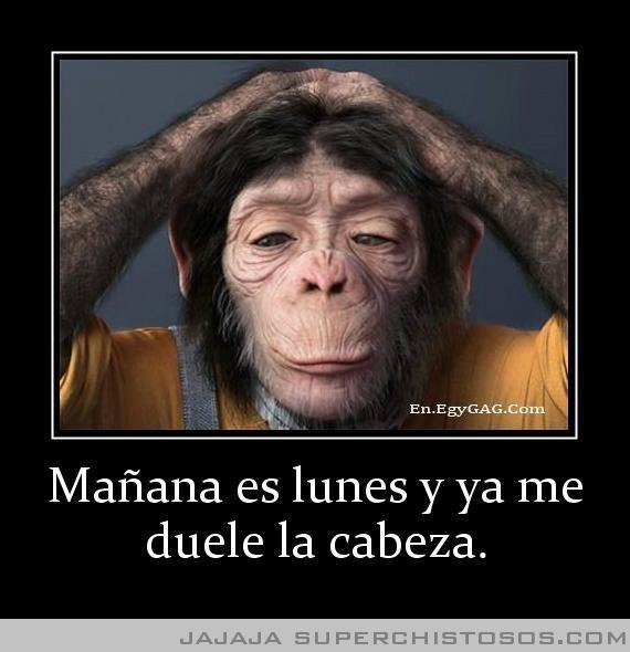 Manana Es Lunes Y Ya Me Duele La Cabeza @Maria Canavello  Me duele todo mi Cuerpo