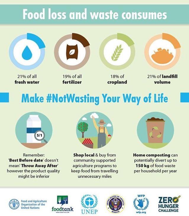 Infografía sobre el desperdicio de alimentos a nivel mundial. #CulturaGreen #NoWastingFood