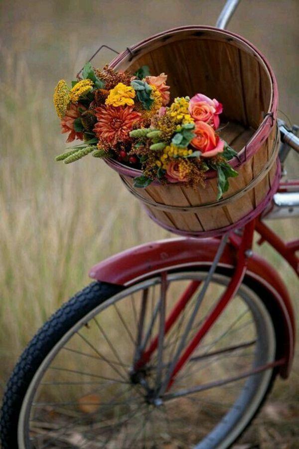 1000+ ideas about herbstblumen on pinterest | brautstrauß rosa, Gartengerate ideen