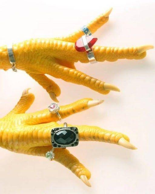 anillos-gallinas