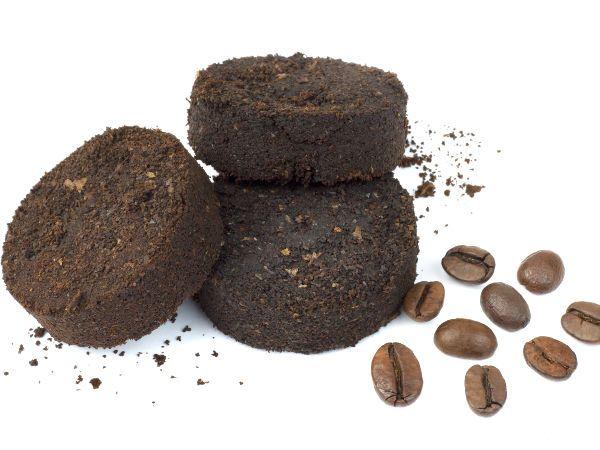 Fusy Z Kawy Jako Nawoz Jak Nawozic Rosliny Fusami Z Kawy In 2020 Mini Garden New Things To Learn Garden