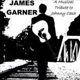 A Musical Tribute To Johnny Cash [CD]