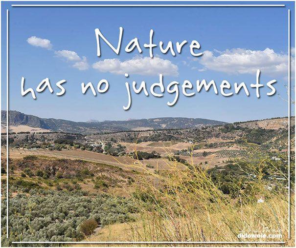 Nature Has No Judgements