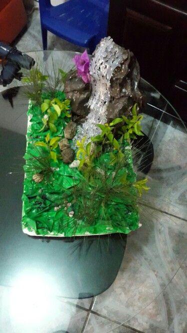 Maqueta bosque lluvioso