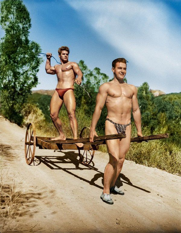 guild single gay men Essential dating tips for introverted men  the 5 best places for introverted men to meet women  we are chronically involuntarily single attraction is not a .