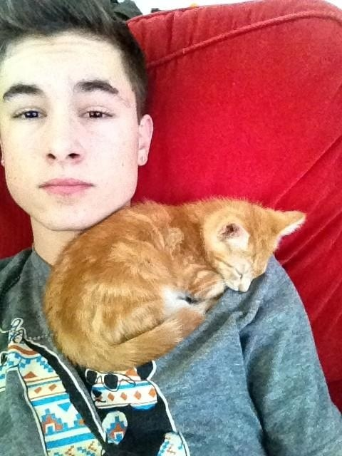 Kian lawley.... aweeeee that kitty is freakincute