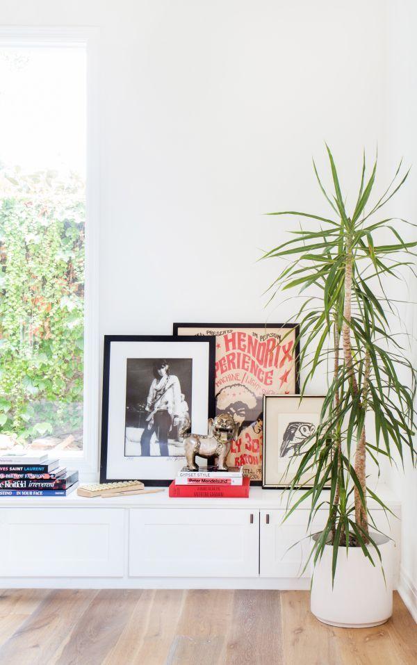 Une plante verte vole la vedette à la série de cadres posée sur le meuble bas du salon.