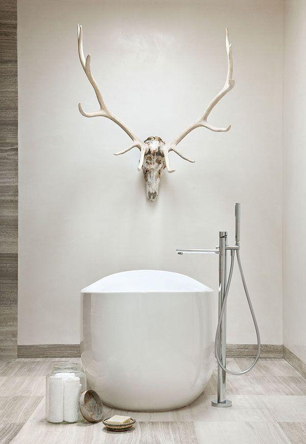 antlers in bathroom