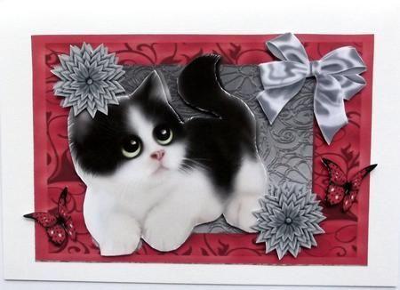 Cute Black   White Kitten with Grey Flowers on Craftsuprint created by Hilary Shemmans - This cute little Kitten was Cup 469270 by Amy Perry ,I printed onto high gloss photo paper I then decoupage and put onto a white card.