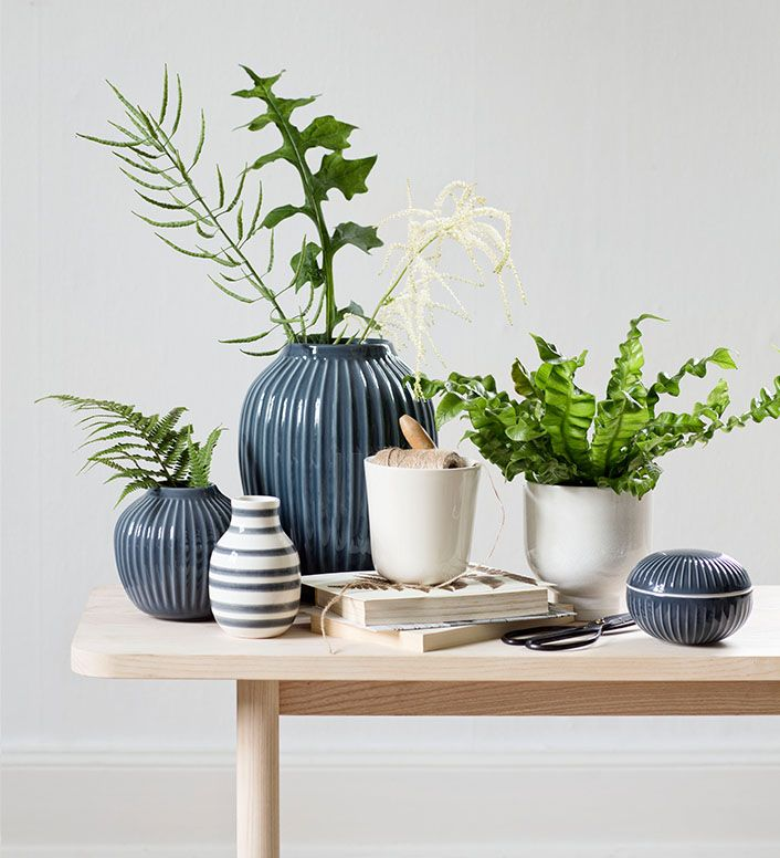 Fill your home with sculptural green plants to create the botanic look.