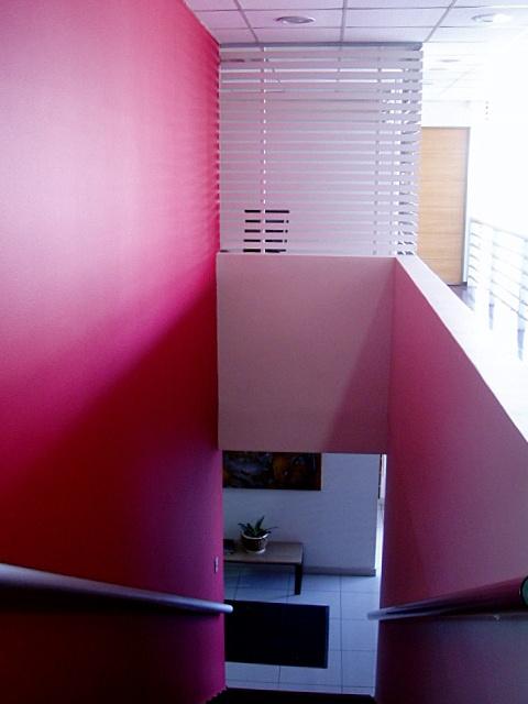 Caja de escalera con intervención de color y remate de treillage.