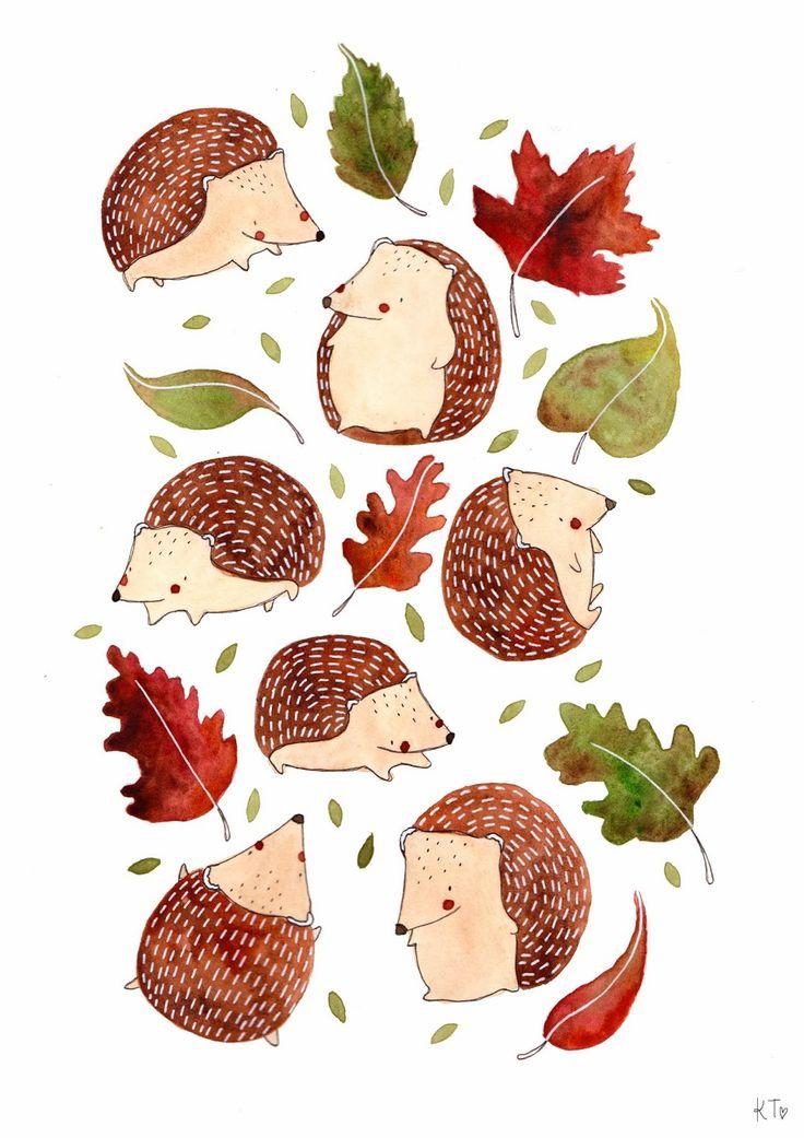 Hedgehog and Leaves by Katie Lou