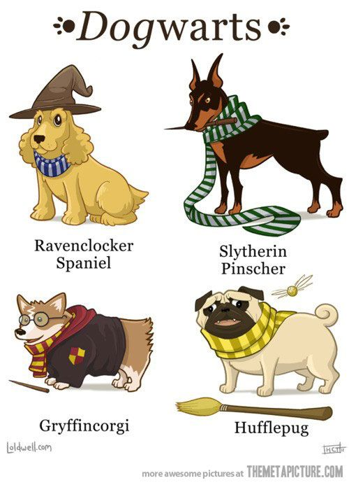 YESSSSSS!!!!!  The Ravenclaw one fits so well!  :)