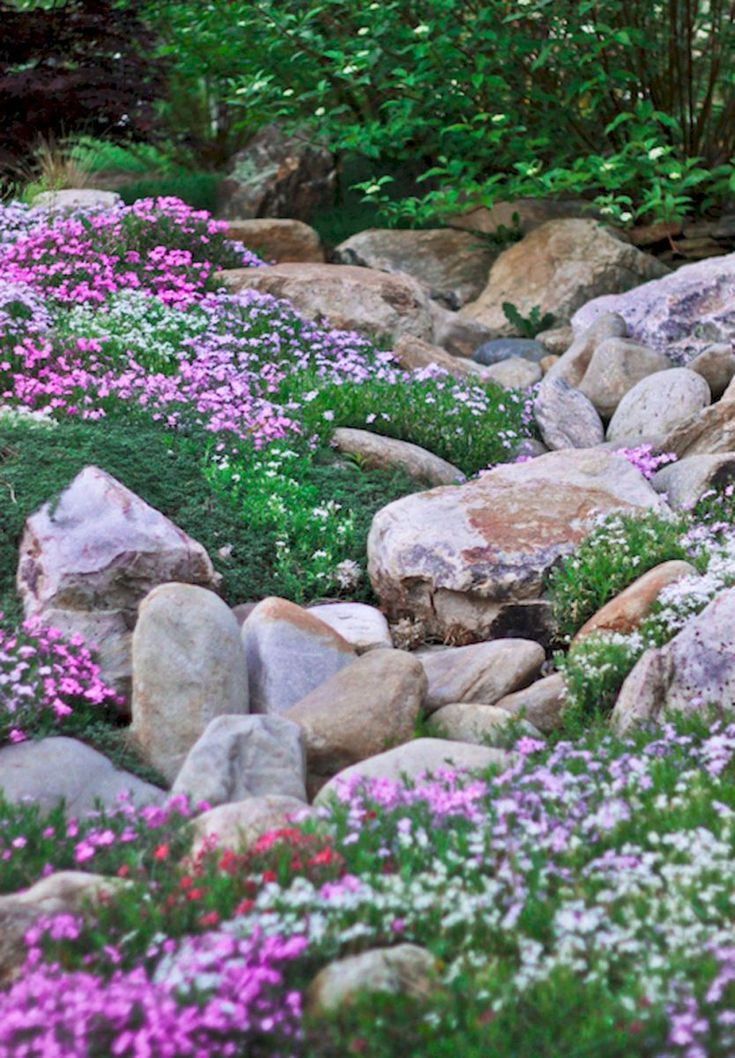 698 best rock garden ideas images on pinterest fabulous front yard rock garden ideas 27 workwithnaturefo