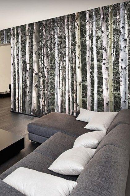 les 25 meilleures id es de la cat gorie papier peint bouleau sur pinterest mur magn tique. Black Bedroom Furniture Sets. Home Design Ideas