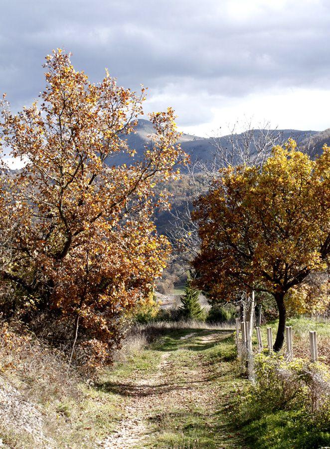 Autumn in #italy #abruzzo