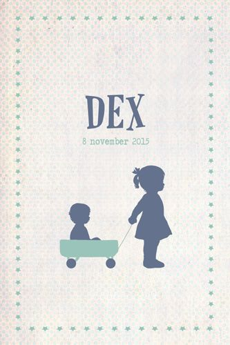 Geboortekaartje Dex - Pimpelpluis - https://www.facebook.com/pages/Pimpelpluis/188675421305550?ref=hl (# broertje - zusje - broer - zus - kindjes - lief - bolderkar - trekkar - origineel)