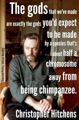 Atheism, Religion, God is Imaginary, Hitchens. The gods that we've made are exactly the gods you'd expect to be made by a species that's about half a chromosome away from being a chimpanzee.