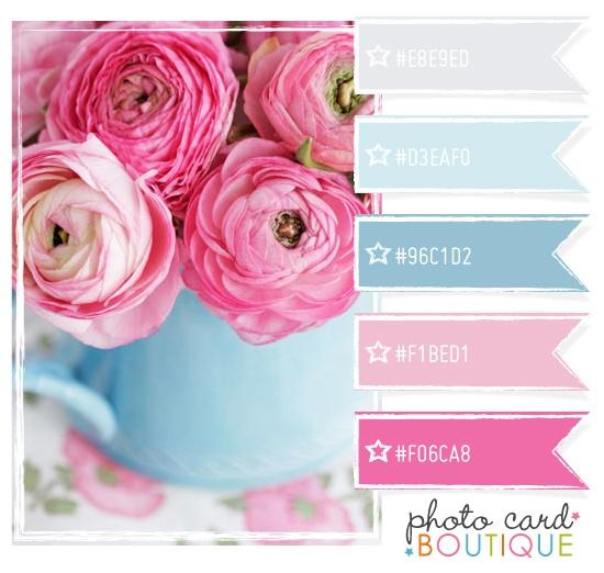 Photographer Templates   Color Palettes   Inspiration - Photo Card Boutique, LLC