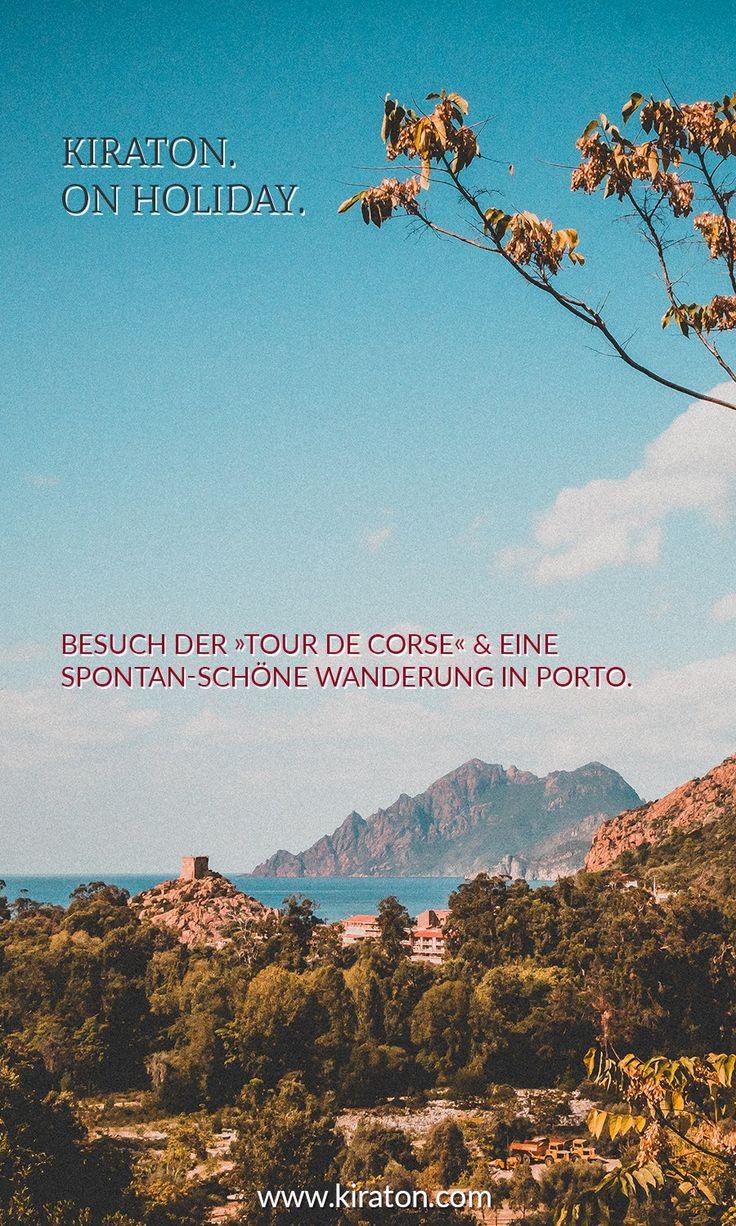 Blick auf Port, Korsika.