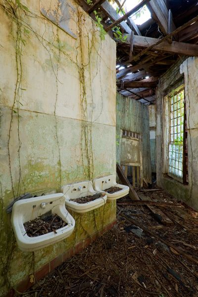 The roof gone, vines have begun to overtake this third-floor bathroom. Central State Hospital, Milledgeville, GA