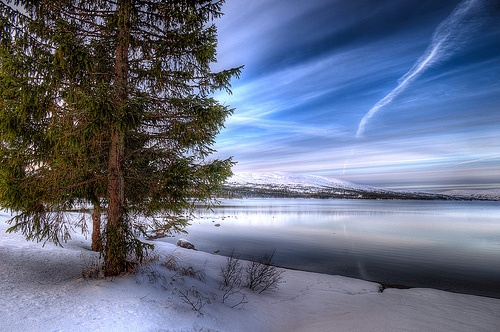 Winter morning by Feren