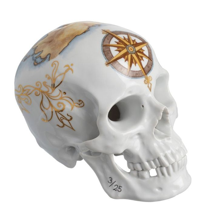 Nymphenburg Memento Mori Skull 2015 Voyage  Contemporary, Porcelain, Decorative Object by Kneen  Co