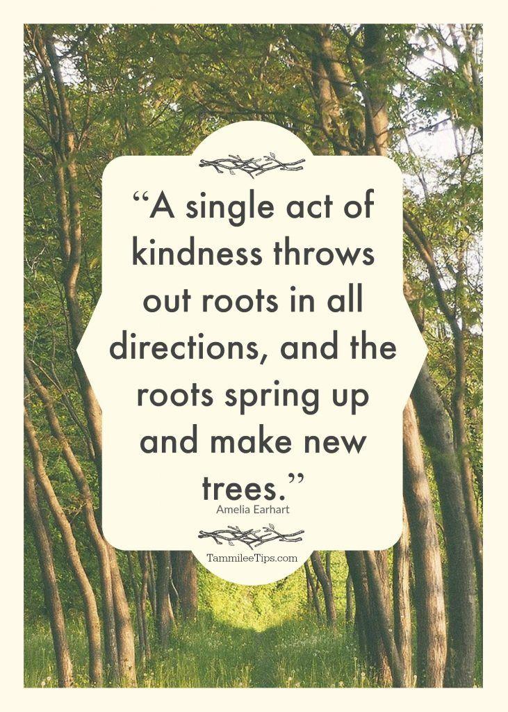 Joy Quote plus 101+ ways to spread joy in the world!