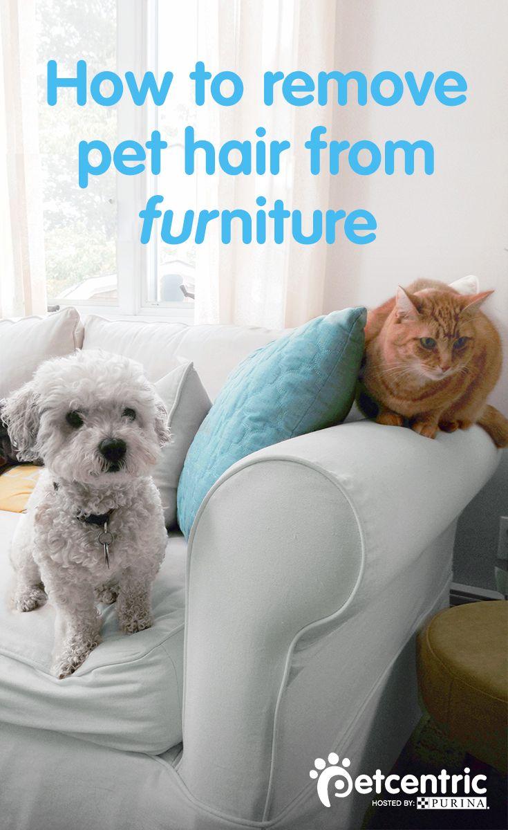 41 best Dog Beds For Large Dogs images on Pinterest ...