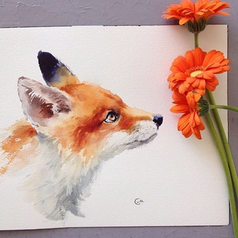 Fox Watercolour By @cmwatercolors _ Check out our other page @arts.gallery
