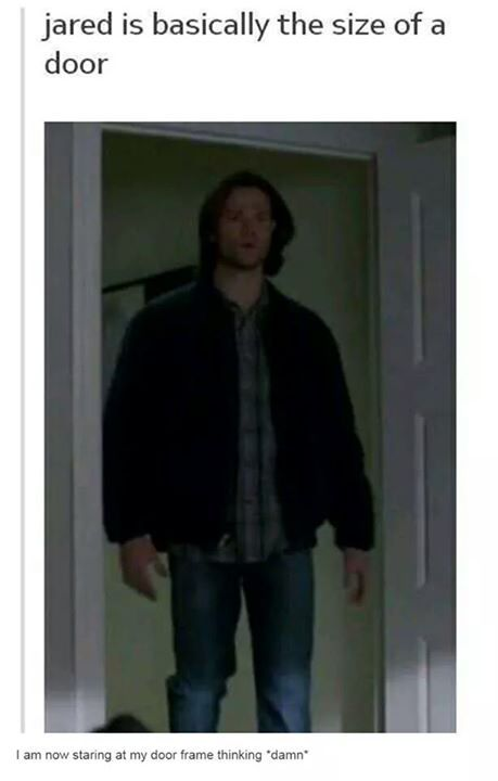 I just went up to my door frame and felt really intimidated cause I stared at where Jared's head would be.
