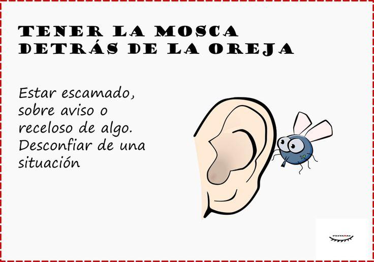 Tener la mosca detrás de la oreja- Expresiones en español