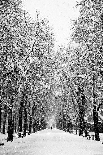 Vitoria, nieve 2013. 50 euros. http://bit.ly/17VCmXN