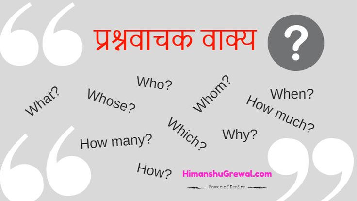 अंग्रेजी में बहुत से प्रश्नवाचक शब्द ऐसे भी है जिसका हमको मतलब नही पता होता जैसे की how many / how much, what like etc. आज में आपको इन सबका मतलब बताऊंगा.