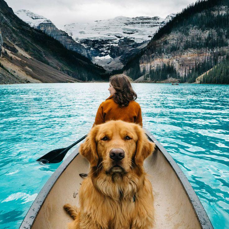 Günün fotoğrafı; Kanada'yı köpeği ile keşfeden gezgin. :)