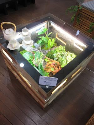 Green terrarium table