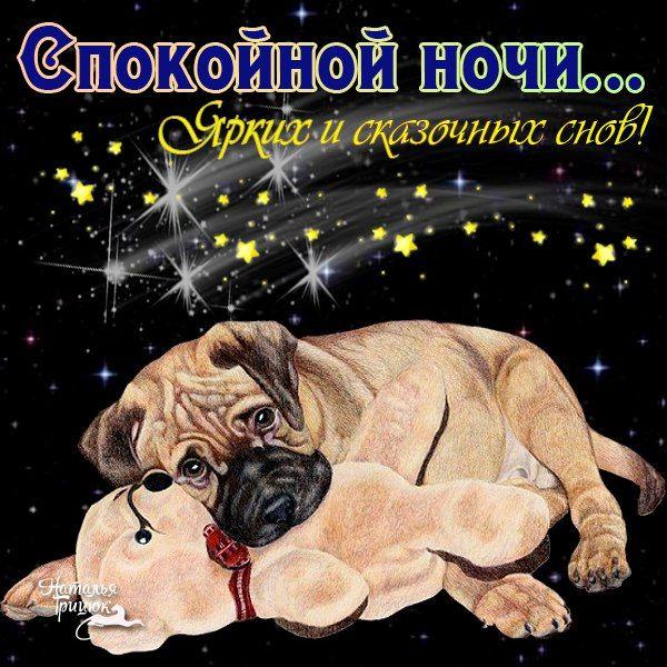 Открытки с собаками спокойной ночи, картинки