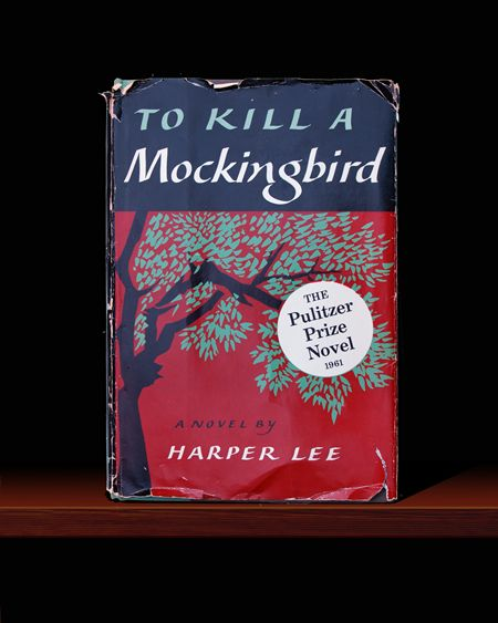 Google Image Result for http://www.discoverygalleries.com/images/JScottNicol_To_Kill_A_Mockingbird_Book.jpg