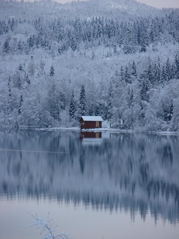 #nordicdesigncollective