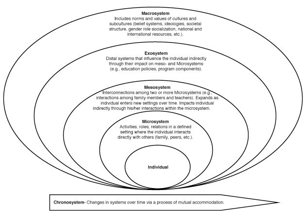 Figure 1: Ecological Model of Interplay Among Persons and Contexts