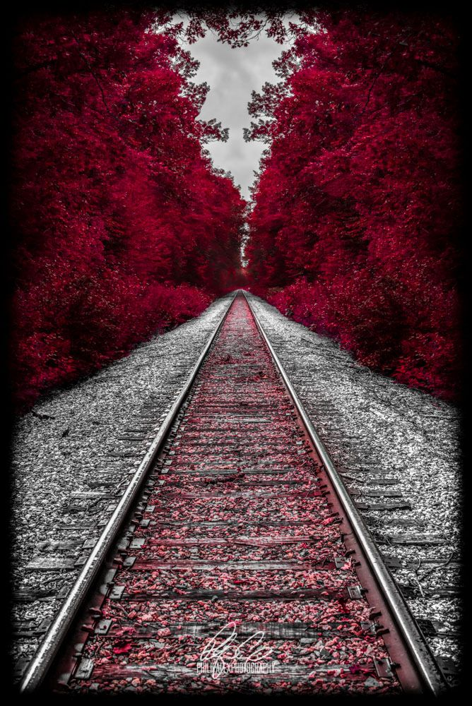 Autumn in New Hampshire; red glow; railroad track; beautifully lined with trees