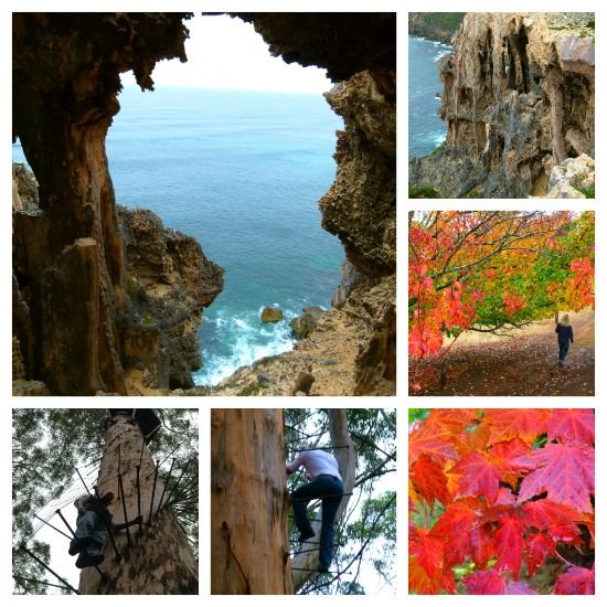 Lovely Photos of the SW region of Western Australia. Featured here near Pemberton are the incredible rock formations around Windy Harbour and Salmon Beach in the D'Entrecasteaux National Park,The Gloucester Tree, both are near Pemberton. The gorgeous autumnal scenes are in the Tree Park near Balingup. ...from Zigzag blog Amazing Western Australia 2012 Highlights in 113 Pictures.